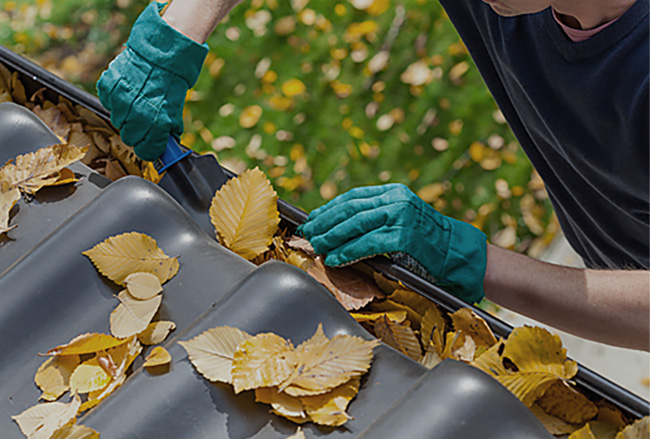 Gutter cleaning in Calgary - Bristol Window Cleaning
